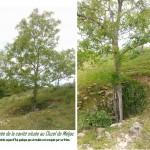 013.Les souterrains-annexe entrée de la cavité du Cluzel